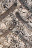 Una pista del neumático Foto de archivo