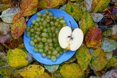 Una placa con uvas y un pedazo de manzana en las hojas amarillas Foto de archivo