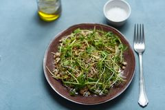 Una placa de la ensalada micro-verde vegetarianism Dieta sana fotografía de archivo