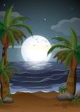 Una playa con palmeras y un parola Imagen de archivo