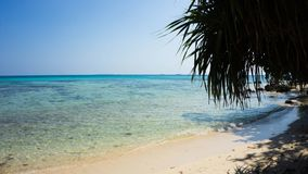 Una playa en orilla con la arena y el claro azul del mar y cielo con la sombra del árbol imagen de archivo