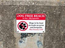 Una playa libre del perro de la muestra en harwich del dovercourt de la pena de la pared Fotos de archivo
