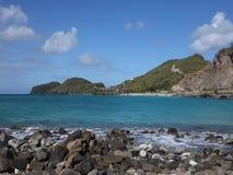 Una playa remota en el Caribe almacen de video