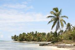 Una playa rocosa en las Bahamas Imágenes de archivo libres de regalías