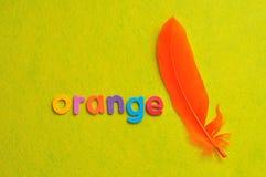 Una pluma anaranjada con la naranja de la palabra Imagen de archivo libre de regalías