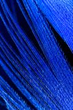 Una pluma azul como fondo abstracto Imágenes de archivo libres de regalías