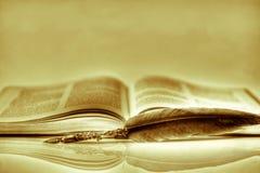 Una pluma para escribir versos de poemas imagen de archivo libre de regalías
