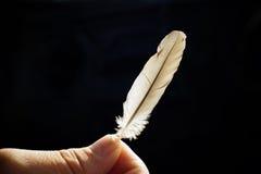 Una pluma para sus pensamientos Foto de archivo