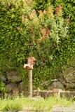 Una pompa del pozzo d'acqua Fotografie Stock Libere da Diritti