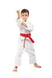Una posizione del bambino di karatè Fotografia Stock Libera da Diritti