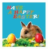 Una postal que representa un conejo y los deseos de un día de fiesta feliz de Pascua ilustración del vector