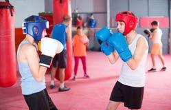 Una pratica di due ragazzi in pugilato d'allenamento di pugilato Fotografia Stock Libera da Diritti