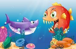 Una presa y un depredador debajo del mar Imágenes de archivo libres de regalías