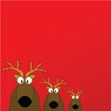 Una priorità bassa delle tre renne Immagine Stock