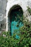 Una puerta verde detrás de las plantas verdes fotos de archivo