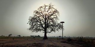 Una puesta del sol del beautifuk en la INDIA imágenes de archivo libres de regalías