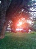 Una puesta del sol hermosa Imágenes de archivo libres de regalías