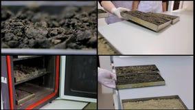 Una punta de prueba del suelo del collage Muestras del suelo en el laboratorio almacen de video
