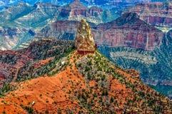 Una punta del dente del ` s dello squalo dell'arenaria bianca sporge da Grand Canyon dell'Arizona immagine stock libera da diritti