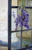 Una puntilla de la lavanda colgó al revés para secarse en la manija de una ventana fuera de una casa medieval tradicional del est Imagenes de archivo