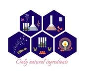 Una raccolta di cinque icone esagonali con gli ingredienti naturali Fotografia Stock