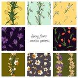 Una raccolta di 8 modelli senza cuciture di colore di vettore con i fiori della molla Strutture con i tulipani, i croco, i bucane illustrazione vettoriale