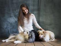 Una ragazza è fotografata con i cani dal riparo I cani sono prudenti ed impauriti, ma sono trattati bene fotografia stock libera da diritti