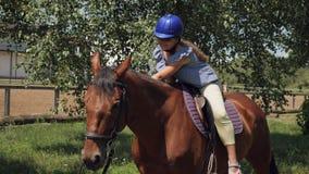 Una ragazza accarezza un cavallo mentre guida stock footage