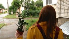 Una ragazza cammina intorno alla città con una pianta video d archivio
