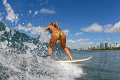 Una ragazza che pratica il surfing Immagini Stock