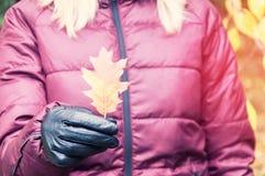 Una ragazza con capelli biondi in un rivestimento lilla tiene una foglia rossa della quercia di autunno in sua mano Fotografia Stock