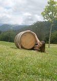 Una ragazza con un barilotto Fotografie Stock