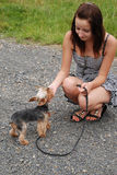 Una ragazza con un cane Immagine Stock Libera da Diritti