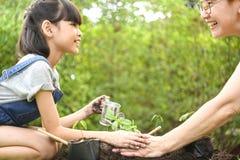 Una ragazza e un genitore che piantano le plantule su suolo fotografia stock
