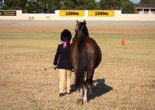 Una ragazza ed il suo cavallino immagine stock
