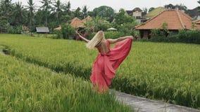 Una ragazza europea gode della solitudine in un giacimento del riso nel villaggio di Bali, turbinando sul terrazzo, tenente la su archivi video