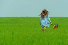 Una ragazza felice con i funzionamenti lunghi dei capelli attraverso un campo verde con un mulino a vento in sue mani fotografia stock