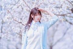 Una ragazza sotto i ciliegi ad aprile immagini stock