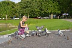 Una ragazza sta alimentando i piccioni nel parco Immagini Stock