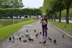 Una ragazza sta alimentando i piccioni nel parco Immagine Stock