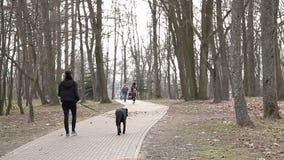 Una ragazza sta camminando nel parco in primavera con un cane nero video d archivio
