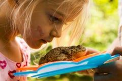 Una ragazza sveglia che esamina vicina il rospo (rana) Fotografia Stock