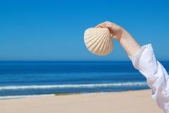 Una ragazza tiene un grande seashell. fotografia stock