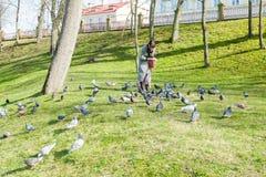 Una ragazza in un cappotto grigio alimenta una moltitudine di piccioni Fotografia Stock Libera da Diritti