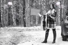 Una ragazza in un giorno nuvoloso di inverno fotografie stock