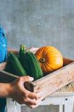 Una ragazza in un vestito blu sta tenendo un raccolto di autunno Immagine Stock Libera da Diritti