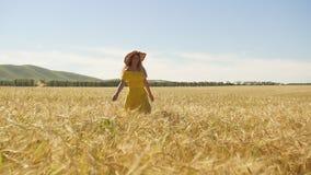 Una ragazza in un vestito giallo con funzionamento lungo dei capelli su un giacimento di grano Movimento lento stock footage