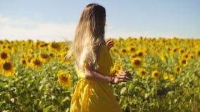 Una ragazza in un vestito giallo funziona in girasoli Movimento lento archivi video