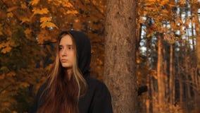 Una ragazza in una maglia con cappuccio con i suoi capelli sciolti facendo una pausa un albero in una foresta autunnale e esamina stock footage