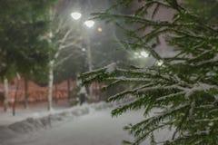 Una rama de un árbol de navidad teniendo en cuenta las linternas en un callejón nevoso foto de archivo libre de regalías